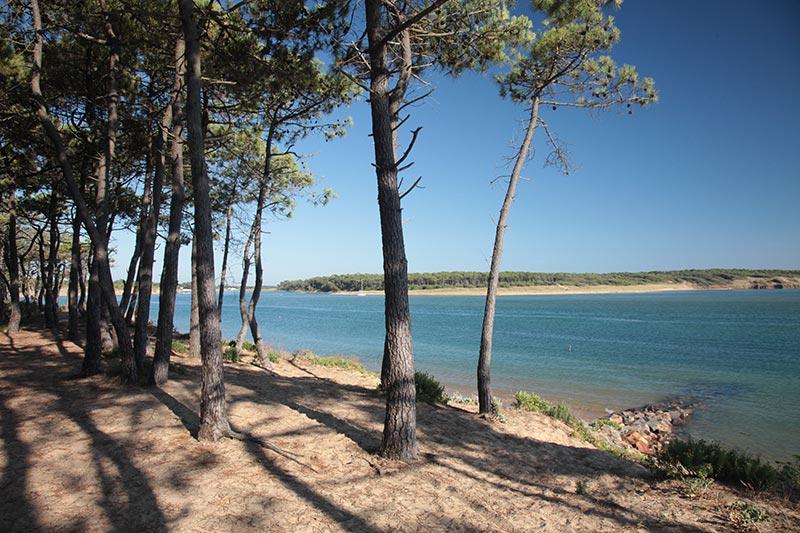 la lagune du veillon talmont st hilaire près du camping la pomme de pin
